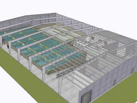 3d Model Animation Tour Of Virginia Shrimp Farms