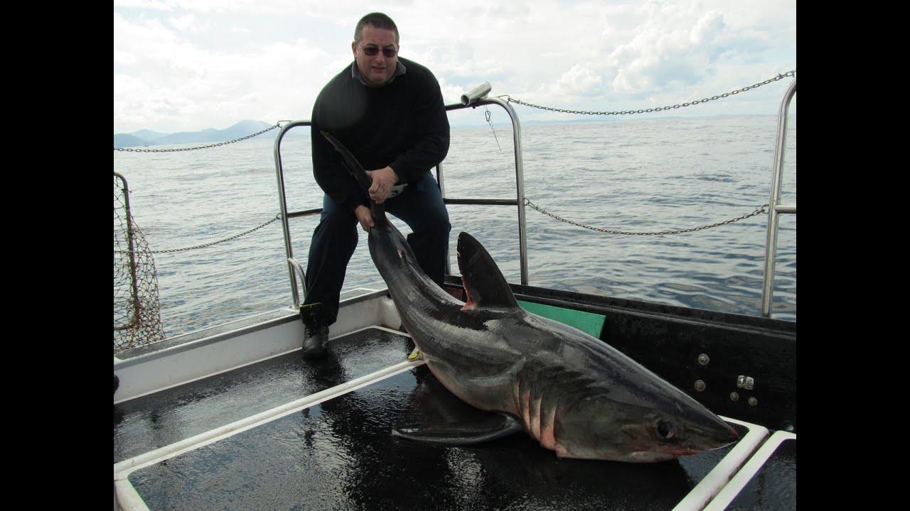 ловля акул на спиннинг видео