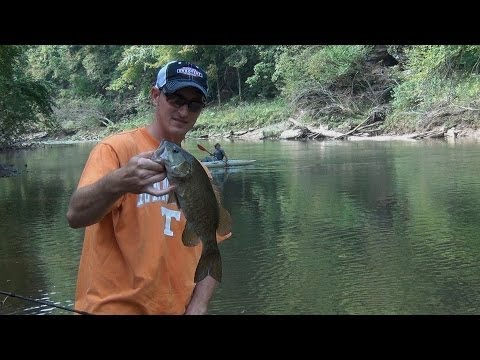 Tennessee smallmouth kayak bass fishing red river for Smallmouth river fishing