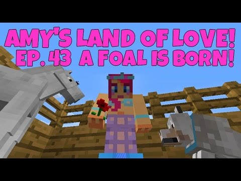 Amy's Land Of Love! Ep.73 A Foal Is Born! | Amy Lee33
