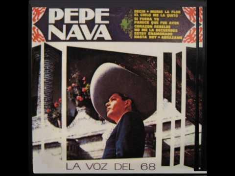 PEPE NAVA - ESTOY ENAMORADO