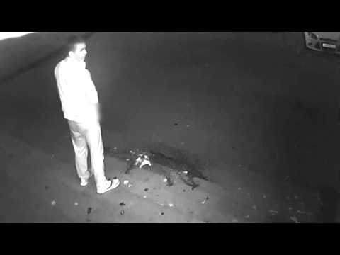 Справил нужду и украл камеру. Место происшествия 24.10.2014