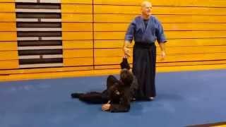 Sensei Steve Fabian & Sifu Lan Tran demonstrating Traditional Jujitsu Jan 24, 2014