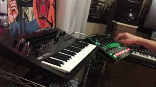Minilogue + TR-8 live loop jam