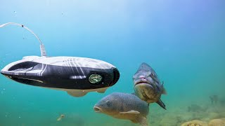 Fishing with underwater drone PowerRay
