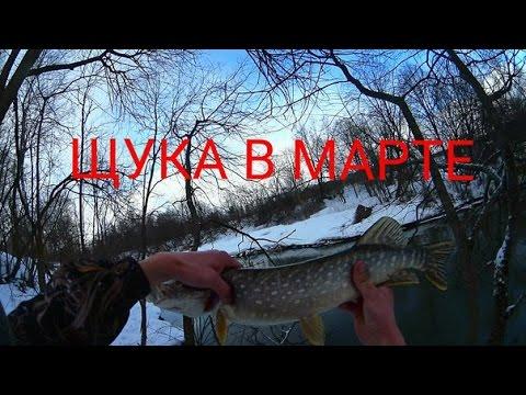 когда начинается весенний сезон рыбалки
