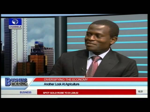 Business Morning: When Will Agriculture Take Huge Share Of Economy? Pt.1