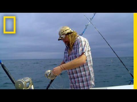Mad Brad | Wicked Tuna