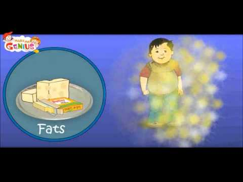 Nutrition (Food ) Table Video for Kids-Food Pyramid -School Education Video