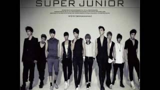 Watch Super Junior Shake It Up remix video