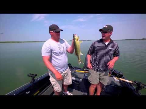 How to Catch Heat Wave Walleye