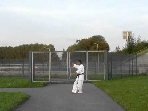 Kyokushin Five Movements Animals Techniques Part I The Crane Image 1