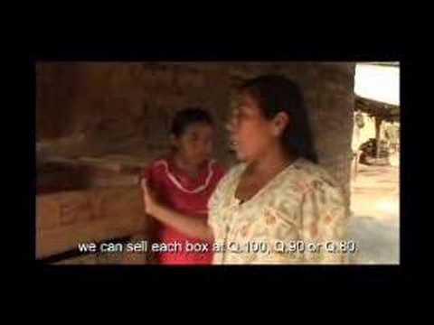 Economic diversification: The Greenhouse (FAO of the UN)