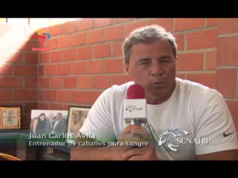 Antesala Gala Hípica 2014  -  Rubén Lanz y Juan Carlos Ávila