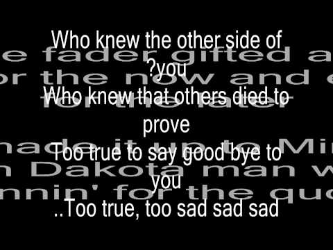 Red Hot Chilli peppers -Dani california lyrics Music Videos