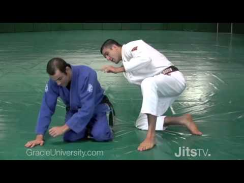 Ryron and Rener Gracie: Special Techniques and BJJ History Image 1