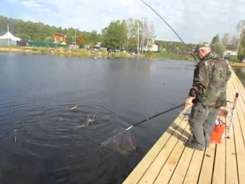 рыбалка в пирогово платник сайт