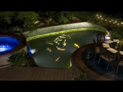 Should i install under water lights in my koi pond youtube for Koi pond lights