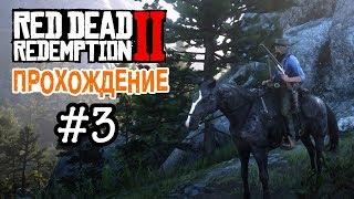 Прохождение Red Dead Redemption 2 #3
