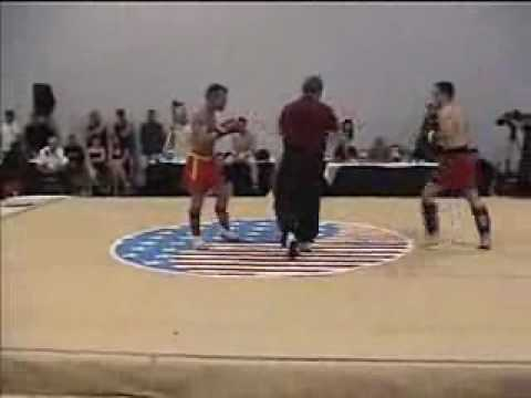 Sanshou Sanda kung fu Image 1