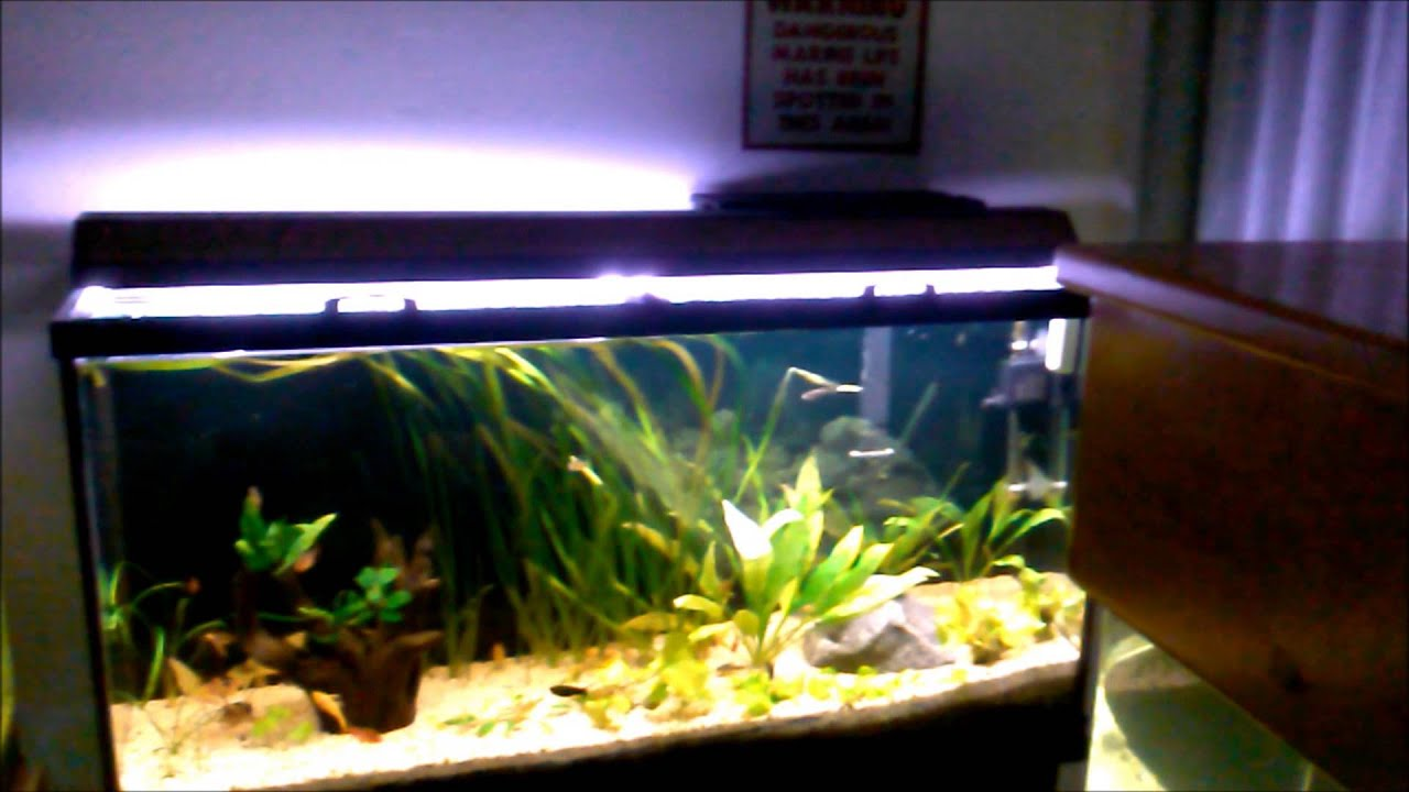how to make your own aquarium from glass