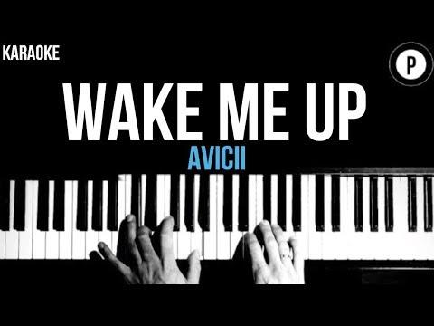 Avicii - Wake Me Up Karaoke Slower Acoustic Piano Instrumental Cover Lyrics