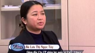 Xuất khẩu lao động - công ty cổ phần nhân lực quốc tế Việt (VILACO)