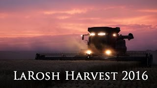 LaRosh Wheat Harvest 2016