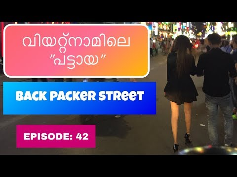 KERALA to SOUTH EAST ASIA HITCH HIKING // EP 42  // BACK PACKER STREET  VIETNAM 🇻🇳 , NIGHT LIFE thumbnail