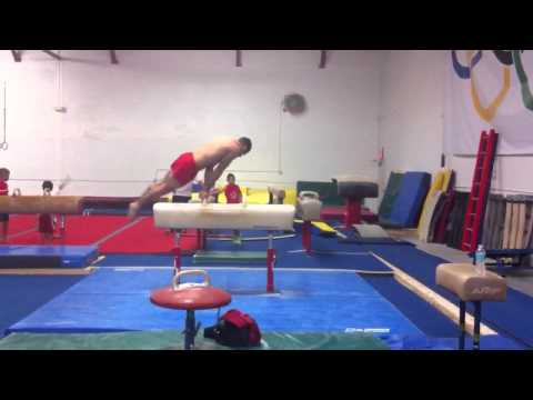 Danell Leyva Pommel Horse routine 6/16/11