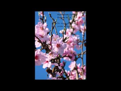 Фердинандо Карулли - Opus 114 No 5 Prelude