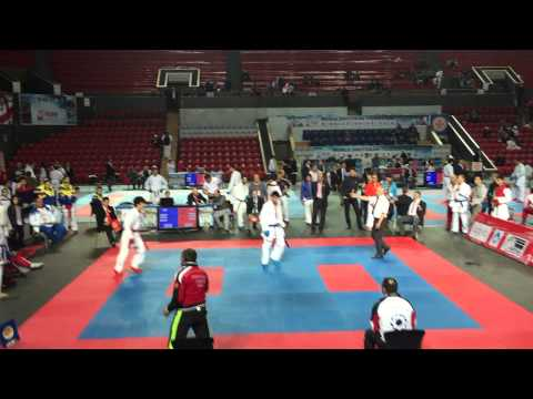 Чемпионат мира по шотокан каратэ-до wsku