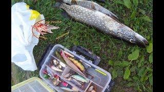 Рыбалка на спиннинг и кружки. Уха на рыбалке.