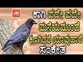 ಕಾಗಿ ಪದೇ ಪದೇ ಮನೆಯಮುಂದೆ ಕೂಗಿದರೆ ಯಾವುದಾರೆ ಸಂಕೇತ   What Happened With The Crow   YOYO TV Kannada