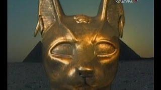 Кошки Египта: от божества до убожества