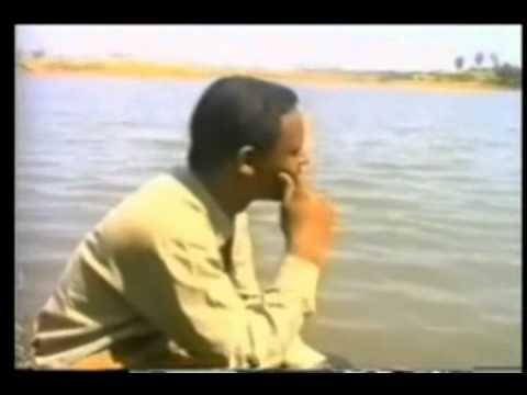 Amharic Mezmur WedelayTemelket