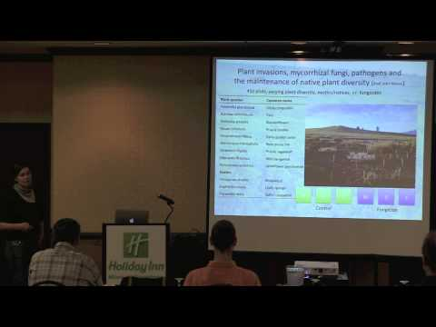 Ylva Lekberg - -- WHAT ARE WE LEARNING  ABOUT SOIL MICROBES, PLANT INVASIONS AND RESTORATION