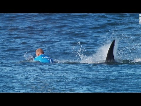 Surfer Escapes Shark Attack During Live Broadcast of Competition