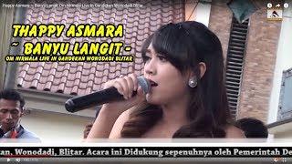 Happy Asmara ~ Banyu Langit Om Nirmala Live In Gandekan Wonodadi Blitar