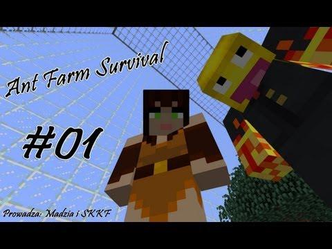 Ant Farm Survival #01