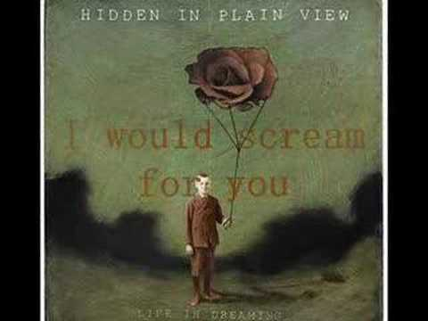 Hidden In Plain View - Bleed For You