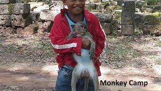 A boy hug baby monkey,Baby monkey playing with a boy, Real life of baby monkey, Monkey Camp part 428