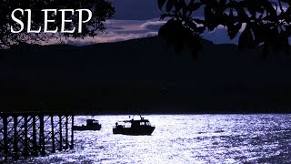Sleep Music and Water Forest Sounds - Calming Night Scenery