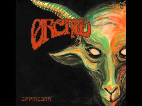 Orchid - Capricorn