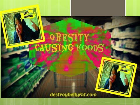 Obesity Causing Foods- Understanding Our Weight Gain