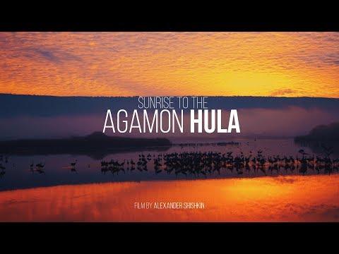 Sunrise. Agamon Hula - Israel 2017