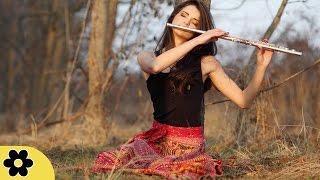 Download Lagu Relaxing Flute Music, Calming Music, Relaxation Music, Meditation Music, Instrumental Music, ✿2816C Gratis STAFABAND