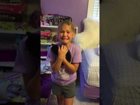 Adorable girl meets kitten for the first time and cries tears of pure joy!! - Marley & Ella
