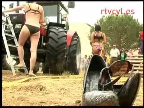 Alcalá del júcar mujeres buscando hombres