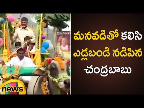 Chandrababu Naidu Sankranthi Celebrations at Naravaripalli With His Grand Son | AP CM Latest News